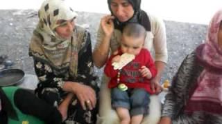 Download Ayranli Bebek Semih AC Video