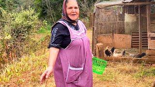 Download El Verdadero Almuerzo de Rancho De Mi Rancho a Tu Cocina Video