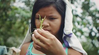 Download This Student in the Amazon is Opening Doors with Technology Video