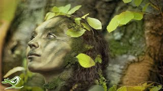 Download 8 Hours of Relaxing Celtic Music: Meditation Music, Beautiful Relaxing Music ★91 Video