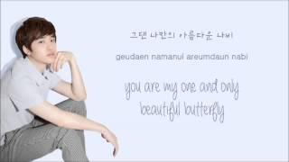Download EXO-K - Don't Go (나비소녀) (Color Coded Hangul/Rom/Eng Lyrics) Video