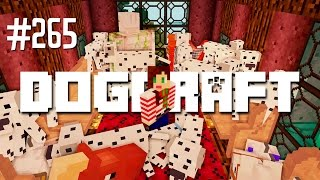 Download THE WEDDING - DOGCRAFT (EP.265) Video