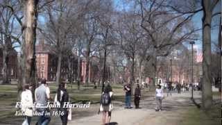 Download Best Universities in the World Video