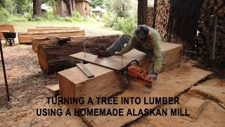 Download Turning a tree into lumber using a homemade Alaskan Mill Video