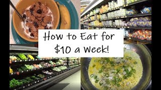 Download How to Eat for $10 a Week: Emergency Extreme Budget Food Shopping Haul Video