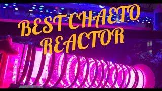 Download CHAETO REACTOR EASY DIY ALGAE EQUIPMENT FOR AQUARIUM | MARINE DEPOT MONSTER REACTOR ACCEL MEDIA Video