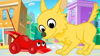 Download Giant Cute Animals And Morphle - My Magic Pet Morphle Videos For Kids Video