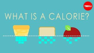 Download What is a calorie? - Emma Bryce Video
