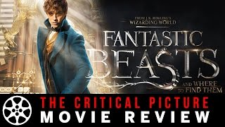 Download Fantastic Beasts and Where to Find Them movie review Video