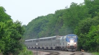 Download Amtrak Train Hits Deer Video