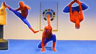 Download TAEKWONDO SPIDERMAN in Real Life | Kicks & Flips Video