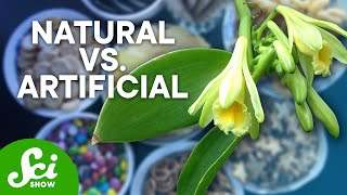 Download What Do 'Natural' and 'Artificial' Flavors Really Mean? Video