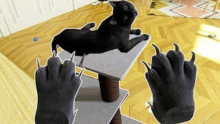Download WHAT IT'S LIKE TO BE A CAT IN VR! - Catify VR Gameplay HTC VIVE Video