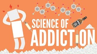 Download The Science of Addiction Video