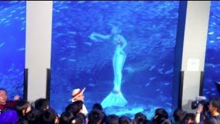 Download Real Mermaid Footage in Japan Aquarium Live TV Video