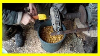 Download Прибор для очистки початков кукурузы от зерна Video