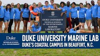 Download Duke's Coastal Campus - The Duke University Marine Lab! Video