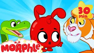 Download Morphle And The Scary Animals - Halloween | My Magic Pet Morphle | Cartoons For Kids | Morphle TV Video
