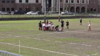 Download UT Dallas at Texas State Women's Rugby Video