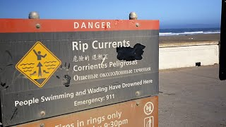 Download How to Escape a Rip Current Video