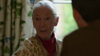 Download Jane Goodall: The Chimpanzee Who Died of a Broken Heart Video