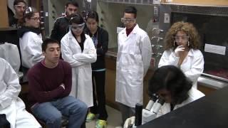 Download Biology First Year Lab - York University Video