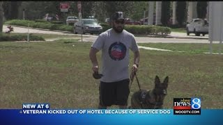 Download Veteran kicked out of hotel due to service dog Video