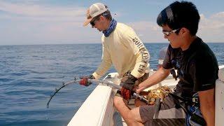 Download Bass Fishermen vs Goliath Groupers - ft. 1Rod1ReelFishing & LunkersTV - 4K Video