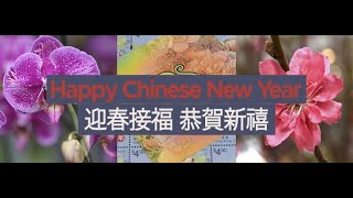 Download Happy Chinese New Year! (Jan 2020) Video