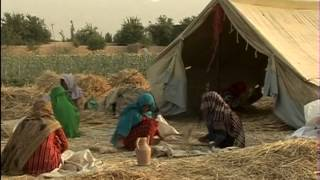 Download Towards Food Security in Afghanistan Video