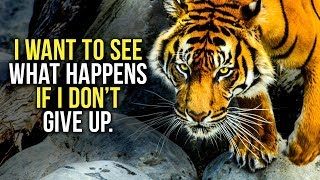 Download GET UP AND NEVER GIVE UP - New Motivational Video Compilation - 30-Minute Morning Motivation Video