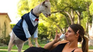 Download Is This Real Life? | Hannah Stocking Video