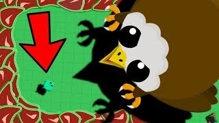 Download MOPE.IO SMALLEST DRAGON vs 1 TROLLING EAGLE!! // Mope.io Short Story Video