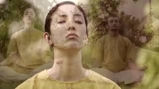 Download Common Yoga Protocol English (Full Version) International Day of Yoga 2017 Video