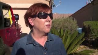Download Swarming bees scare Las Vegas couple into action Video