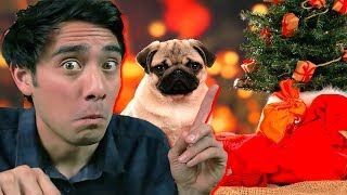 Download Funny Zach King Christmas Magic Tricks Collection - Best Awesome Magic Vines Ever Video