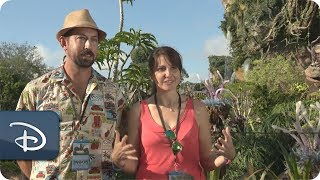 Download Guest Share What They Love About Pandora - The World of Avatar   Walt Disney World Video