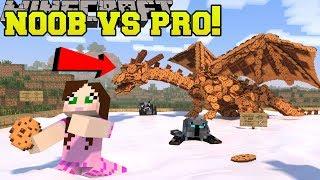 Download Minecraft: NOOB VS PRO!!! - DEFEND THE COOKIES! - Mini-Game Video