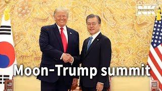 Download Moon, Trump discuss N. Korea ahead of their DMZ visit Video