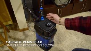 Download How to clean a Cascade Canister Filter! Video