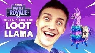 Download Ninja Finds The Loot Llama! - Fortnite Battle Royale Gameplay - Ninja Video