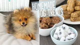 Download EASY Homemade Dog Treats featuring MY PUPPY!! | RECIPE Video