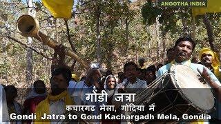 Download गोंडी जत्रा: गोंड कचारगढ़ मेला, गोंदिया Gondi Jatra: Gond Kachargadh Mela Video