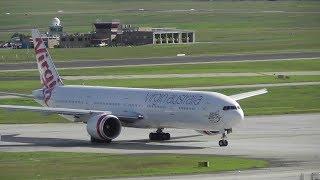 Download Australia vs New Zealand 777 Battle ● Melbourne Airport Plane Spotting Video