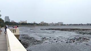 Download Irma sucks water out of Sarasota Bay Video