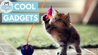Download 10 Cool Gadgets For Cats Video