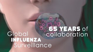 Download WHO: Global Influenza Surveillance, 65 Years of Collaboration Video