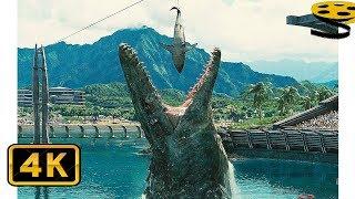 Download Сцена с Мозазавром | Мир Юрского периода | 4K ULTRA HD Video