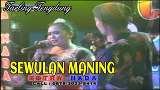Download SEWULAN MANING || TARLING TENGDUNG || CITRA NADA || LIVE PESTA LAUT PEMUDA BONGKOR || MUARAREJA Video