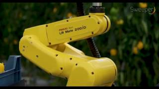 Download The SWEEPER-robot Video
